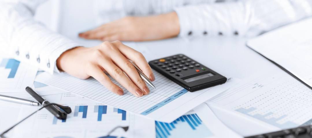 Что должен знать директор ИТ компании о законодательстве, учете, ценообразовании